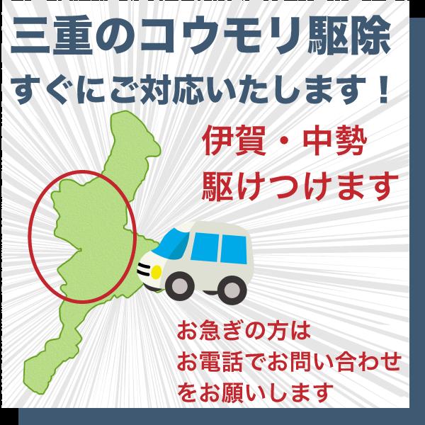 三重県のコウモリ駆除すぐにご対応いたします。伊賀・中勢エリアかけつけます。