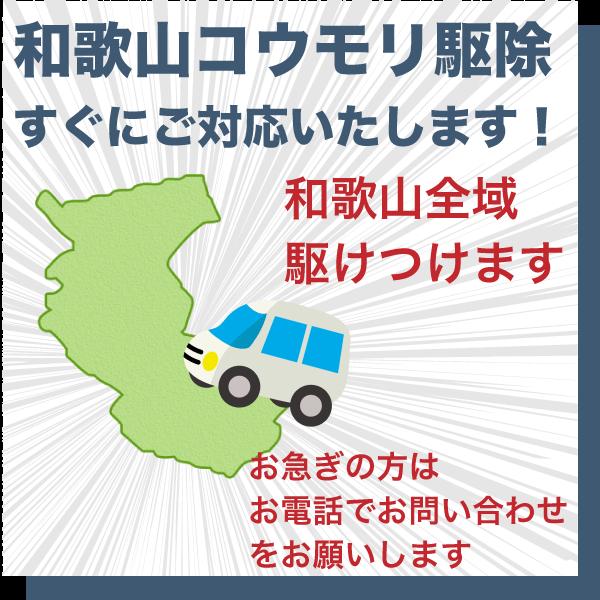 和歌山のコウモリ駆除すぐにご対応いたします