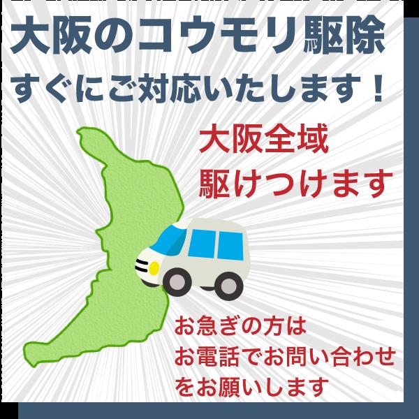 大阪のコウモリ駆除は県内全域すぐに駆けつけます。